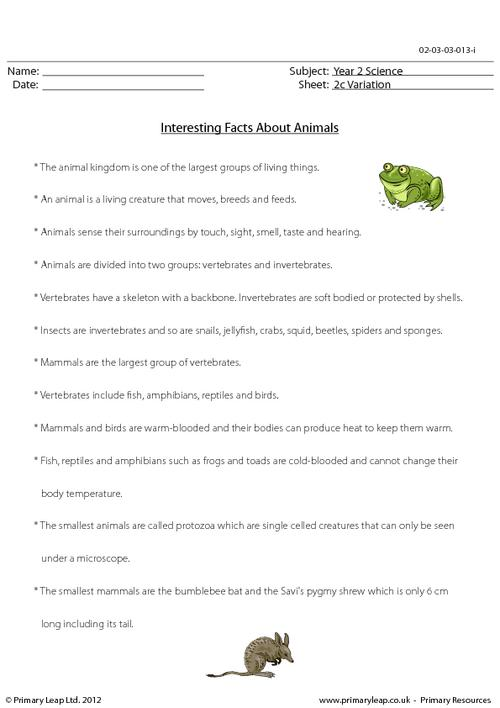Animals - Fact sheet