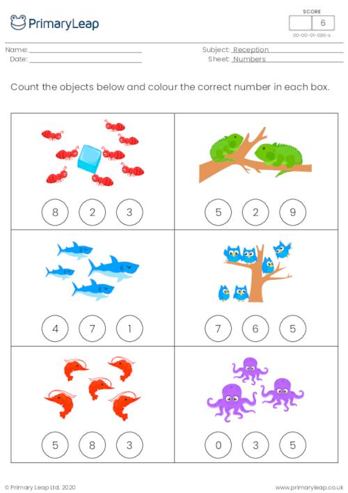 Count and colour - How many...? 2