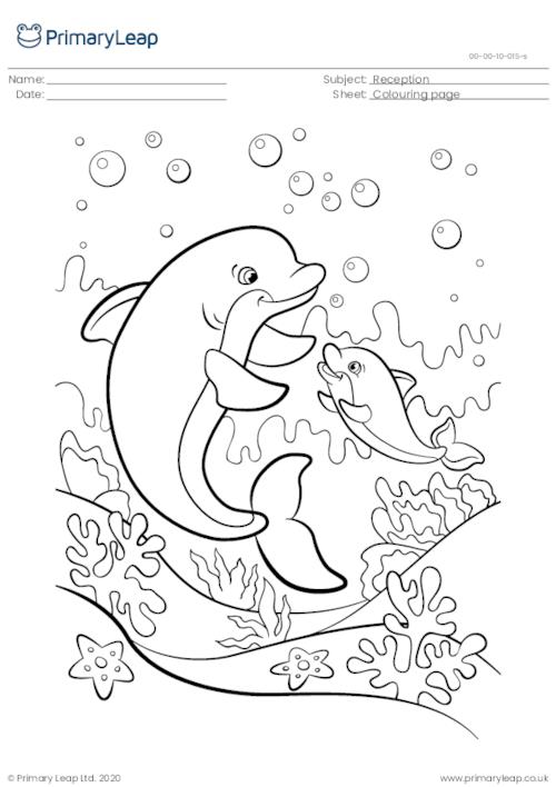 Colouring page - Dolphins swimming in the ocean