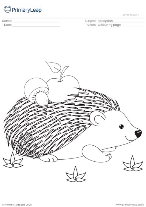 Colouring page - Hedgehog