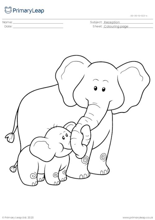 Two elephants colouring page