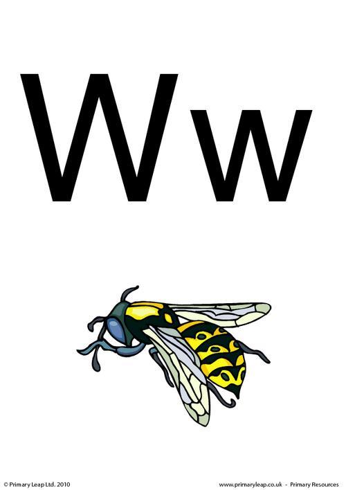 Letter Ww