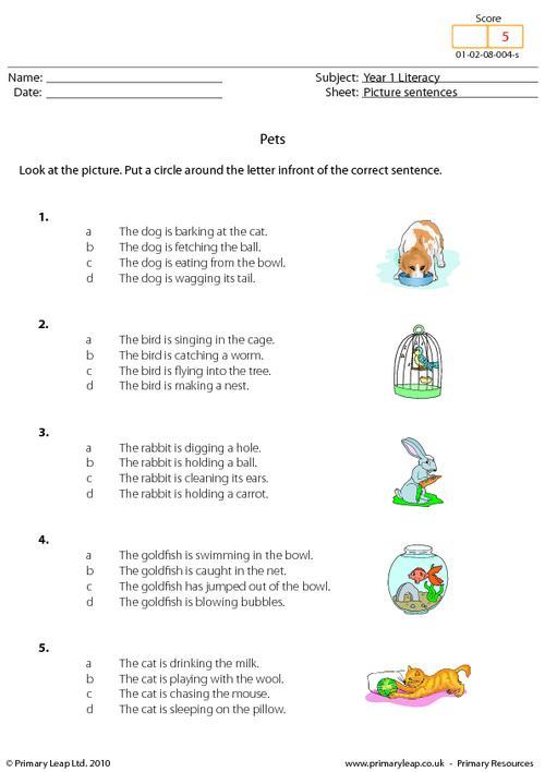 Picture sentences - Pets