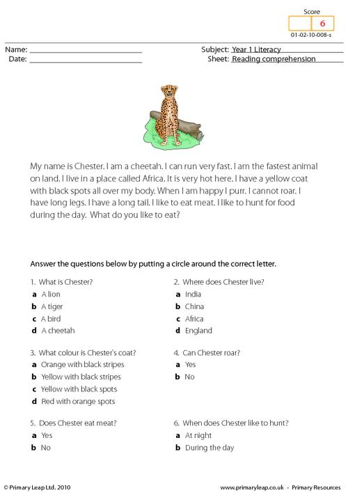 Reading comprehension - I am a cheetah (short text)