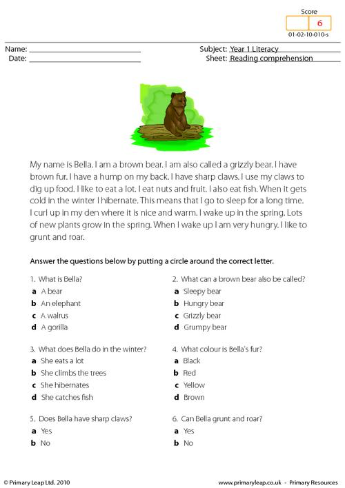 Reading comprehension - I am a bear