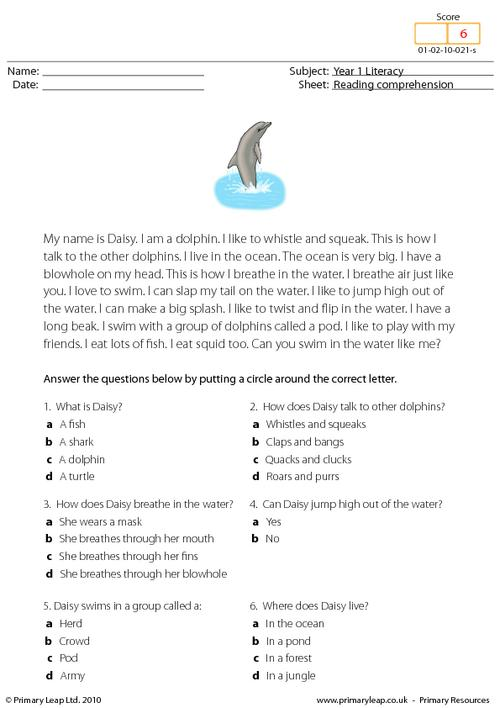 Reading comprehension - I am a dolphin