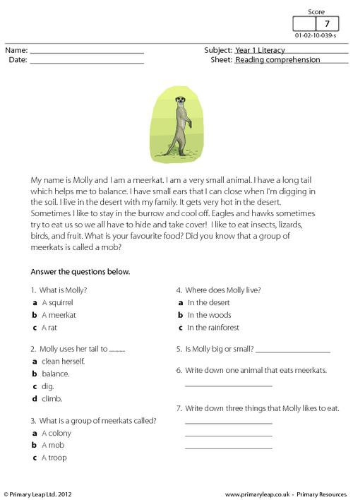 Reading comprehension - Molly the Meerkat