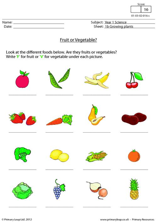 Fruit or vegetable?