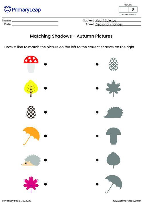 Autumn Shadow Matching