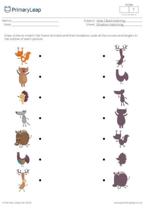 Shadow matching - Forest animals
