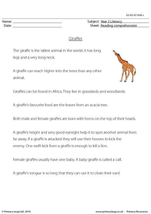 Reading comprehension - Giraffes (non-fiction)