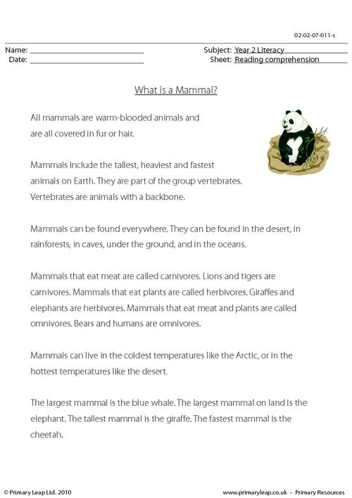 Reading comprehension - What is a Mammal? (non-fiction)