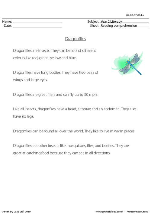 Reading comprehension - Dragonflies (non-fiction)