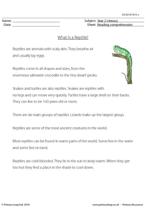 Reading comprehension - What is a Reptile? (non-fiction)