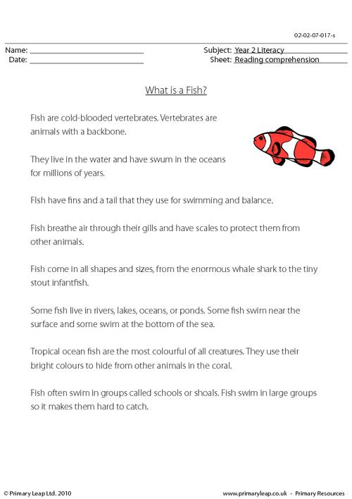 Reading comprehension - What is a Fish? (non-fiction)
