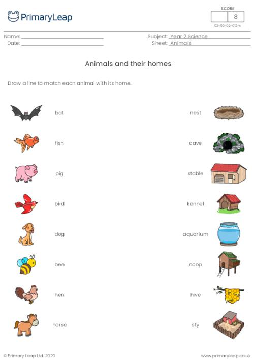 Animals and their homes 2