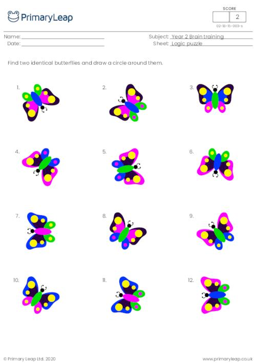 Find two identical pictures - Butterflies