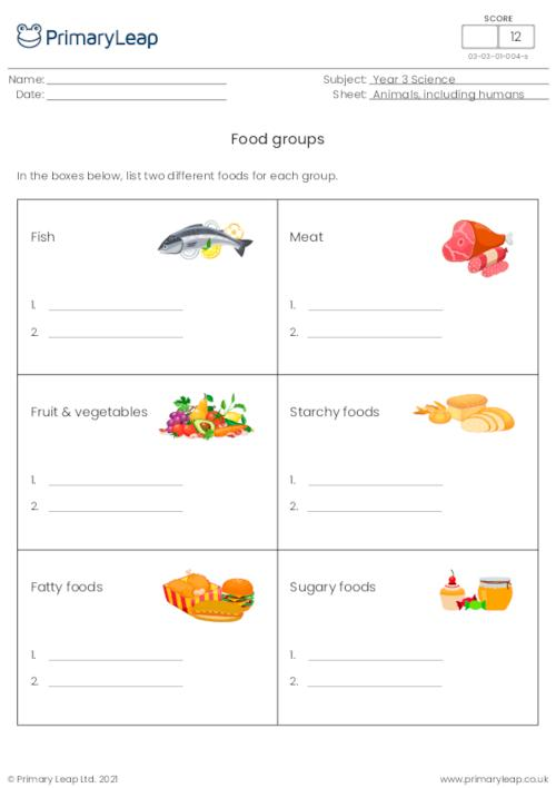 Science Food Groups Worksheet Primaryleap Co Uk