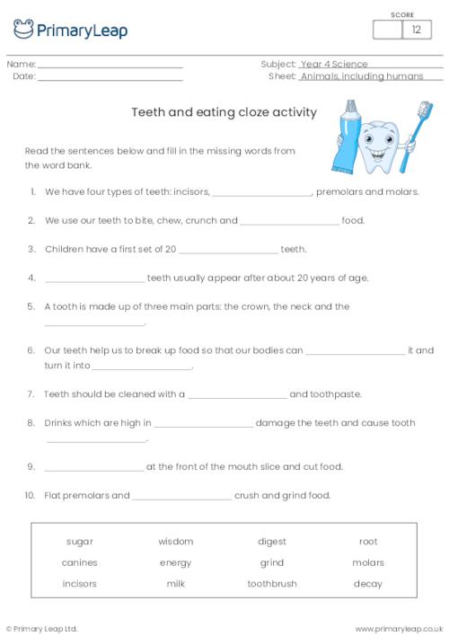 Teeth and eating - Cloze exercise