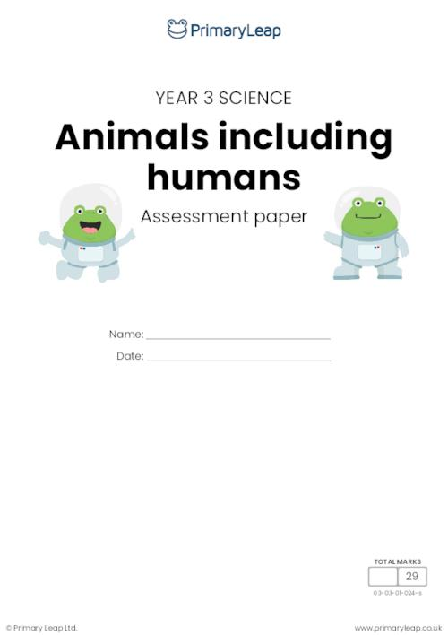 Y3 Animals, including humans assessment