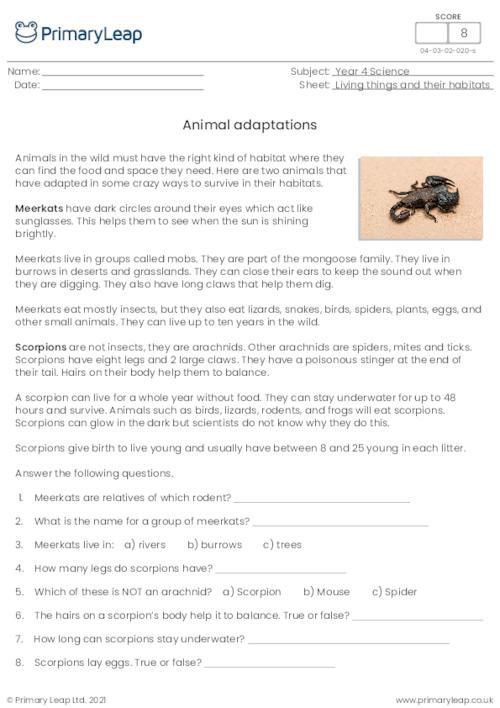 Animal Adaptations 2