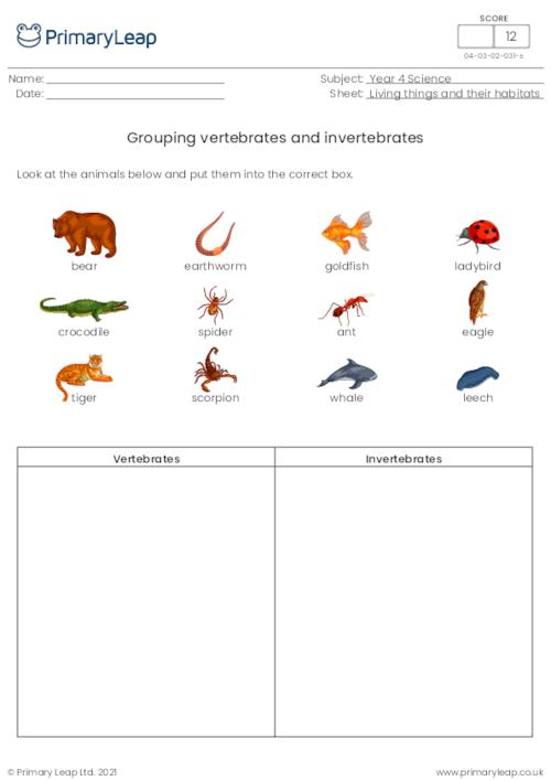 Grouping vertebrates and invertebrates