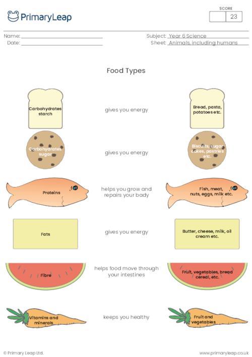 Food types