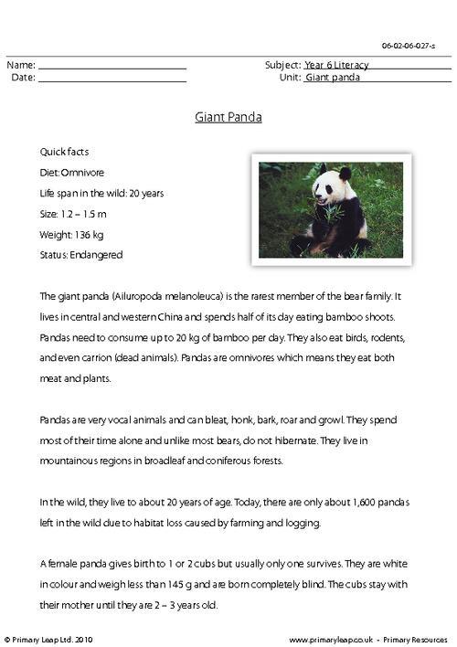 Reading comprehension - Giant panda