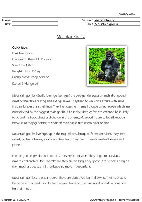 Reading comprehension - Mountain gorilla