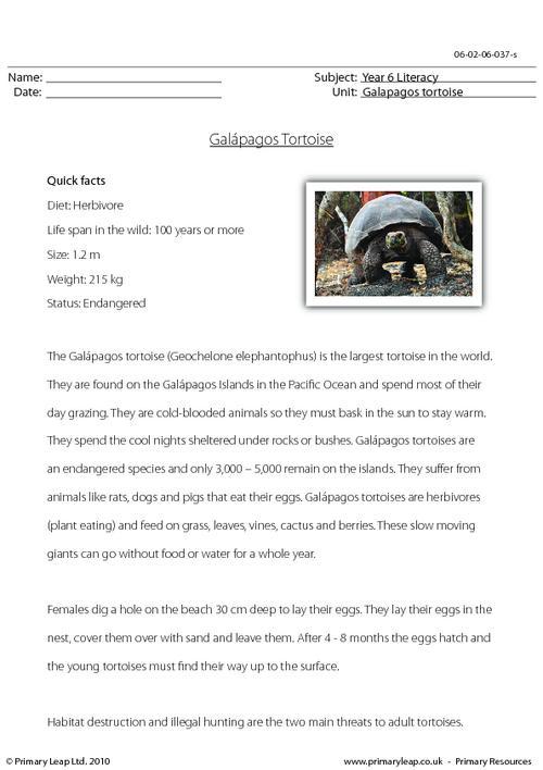 Reading comprehension - Galapagos tortoise