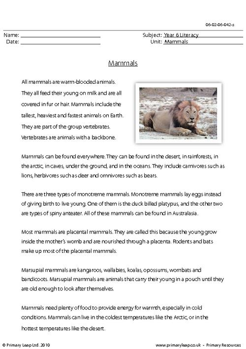 Reading comprehension - Mammals