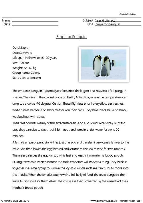 Reading comprehension - Emperor penguin