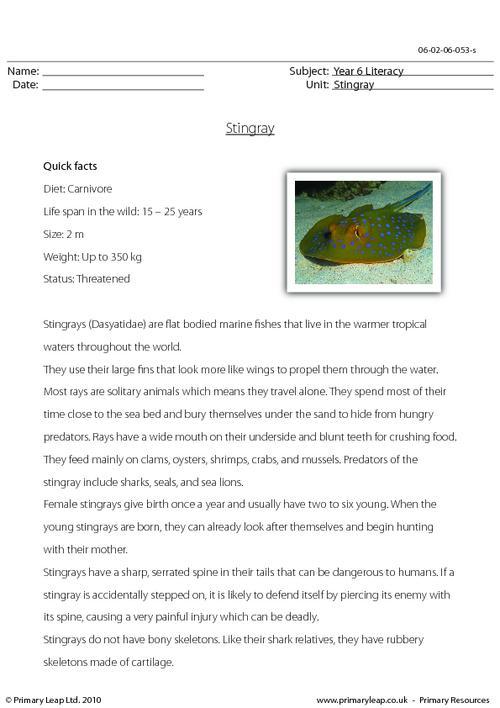 Reading comprehension - Stingray