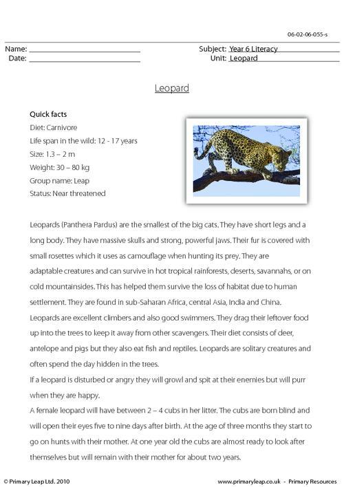 Reading comprehension - Leopard