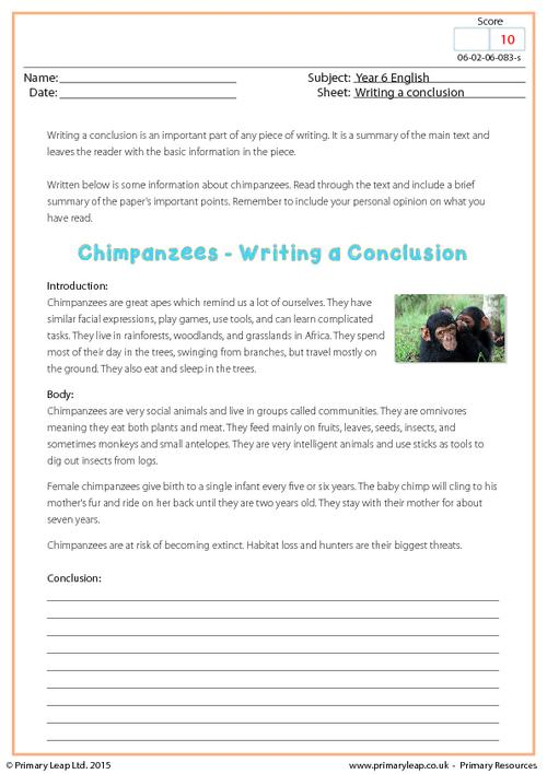 Writing a Conclusion - Chimpanzees