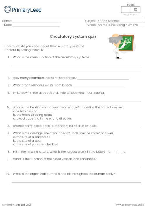 Circulatory System Quiz