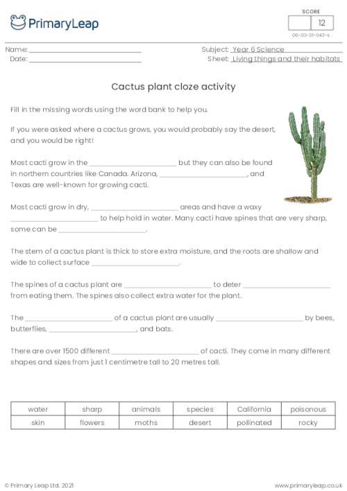 Cactus plant cloze activity