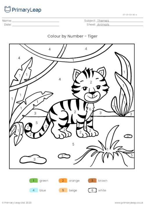 Colour By Number - Tiger