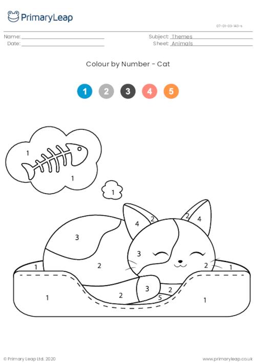 Colour By Number - Cat