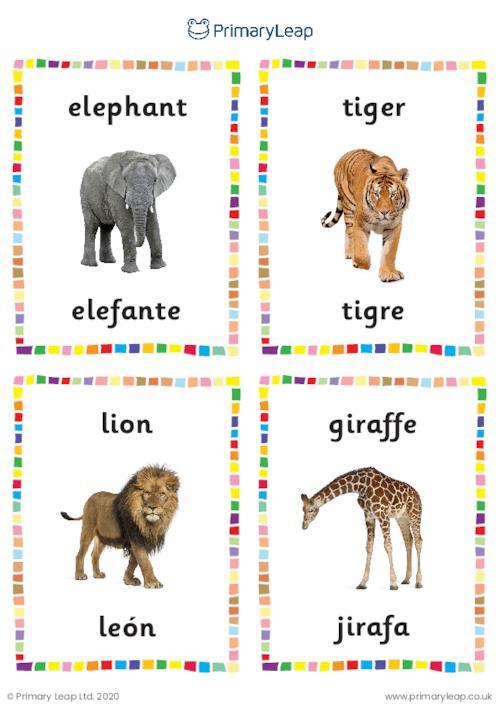English to Spanish flashcards -  Wild animals