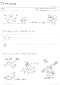 Alphabet tracing - Letter Ww