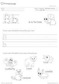Alphabet tracing - Letter Bb