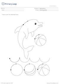 Pencil control - Dolphin
