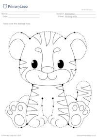Pencil Control - Tiger