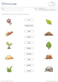 Word and picture matching - Nature