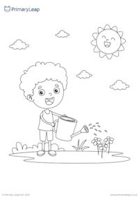 Watering flowers colouring page