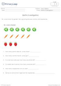 Maths investigation - Mr. Jones's garden