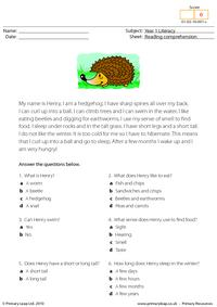 Reading comprehension - I am a hedgehog