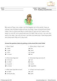 Reading comprehension - I am a tiger