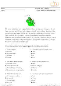Reading comprehension - I am a grasshopper